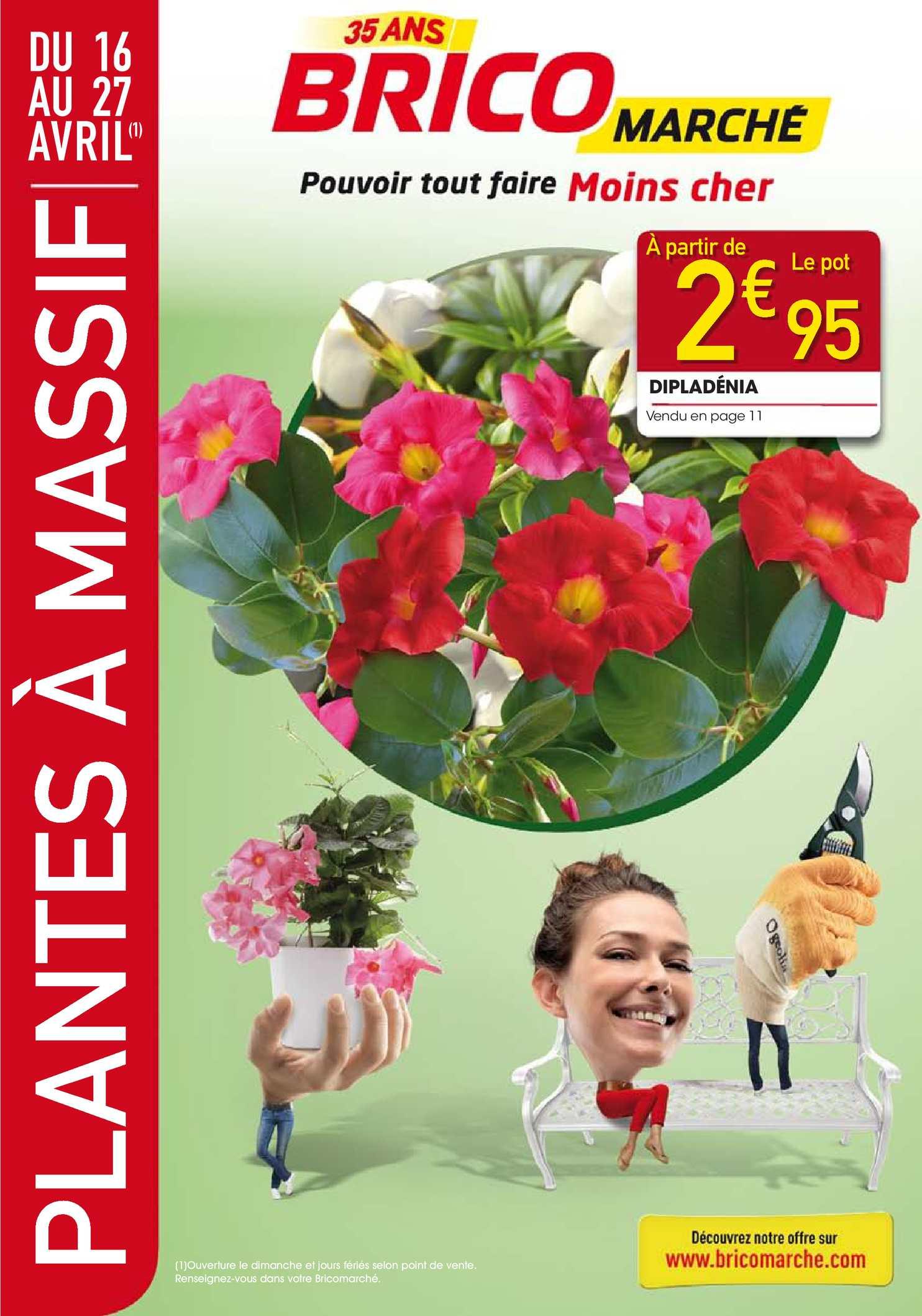 Plante Exterieur Toute Saison Pas Cher calaméo - plantes à massif, pensez bricomarché !