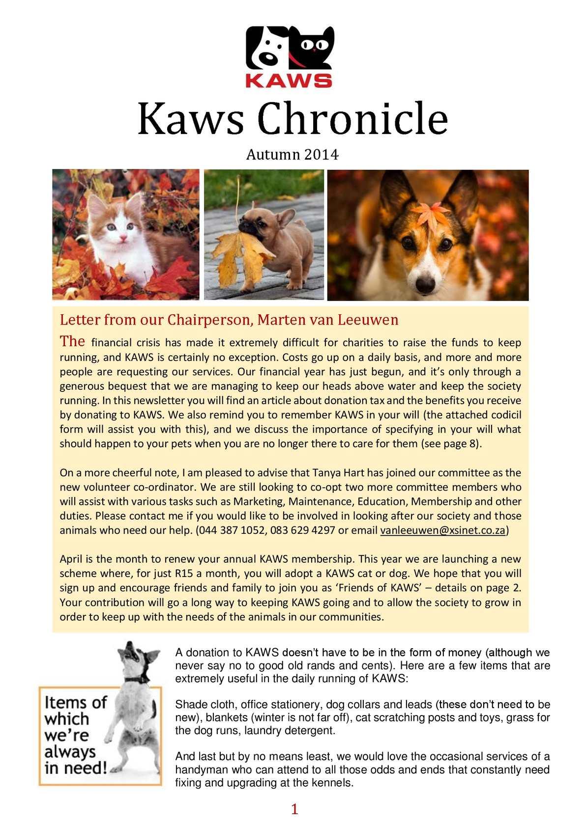 9af68352d07b Calaméo - KAWS Chronicle Autumn 2014