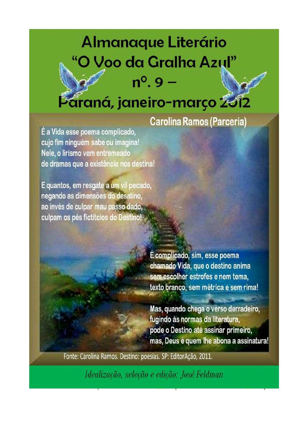 4eab34e71a7 Calaméo - ALMANAQUE O VÔO DA GRALHA AZUL Nº9 Editor  José Feldman - Pr