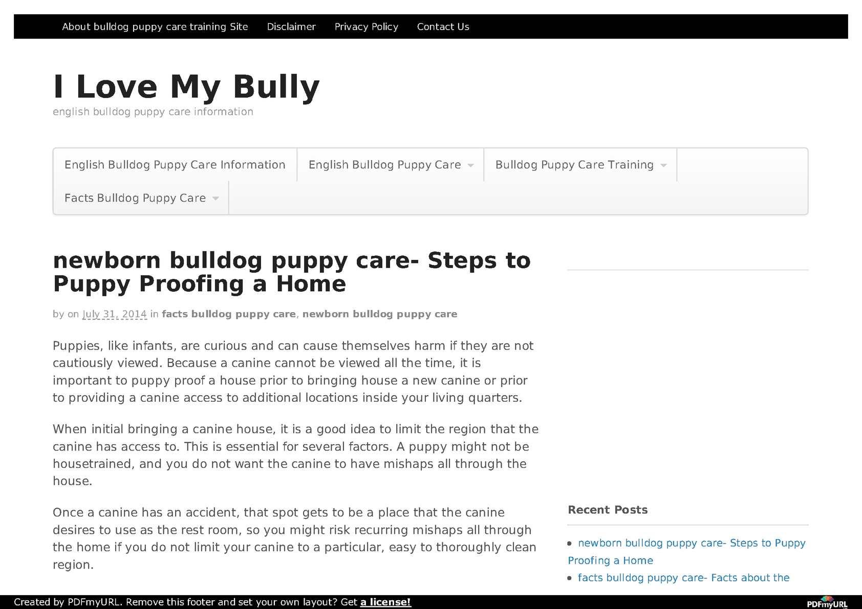 Calameo English Bulldog Puppy Care