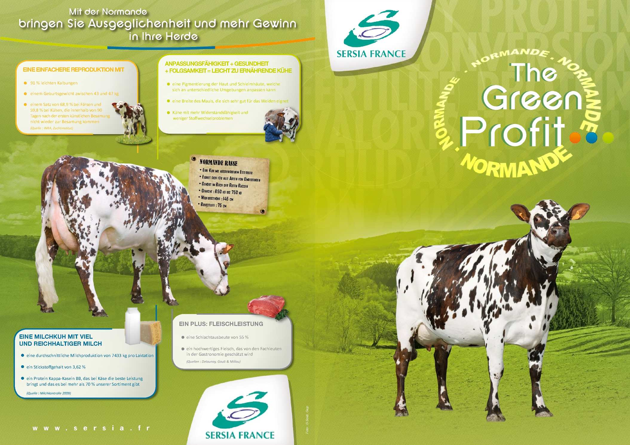 PLAQUETTE NORMANDE GREEN PROFIT EVOLUTION INTERNATIONAL ALL