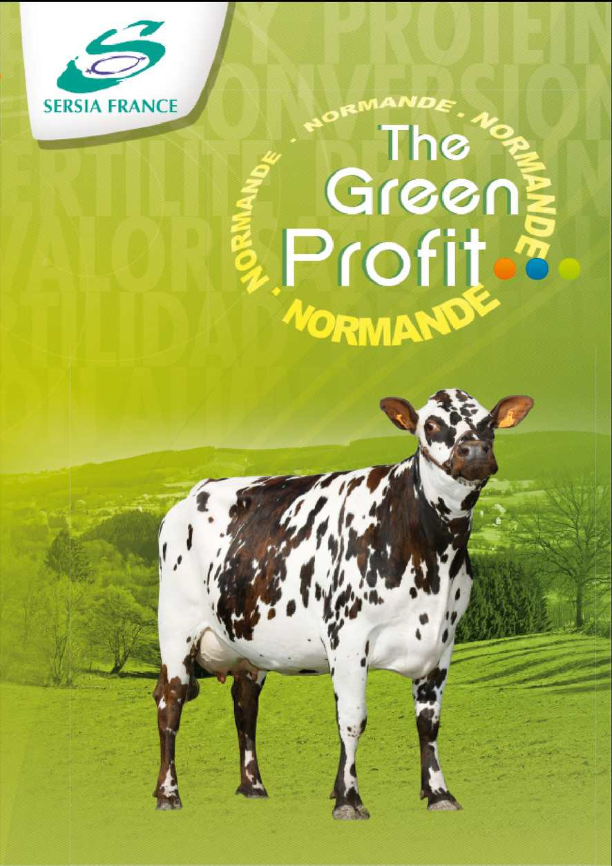 PLAQUETTE NORMANDE GREEN PROFIT EVOLUTION INTERNATIONAL ESP