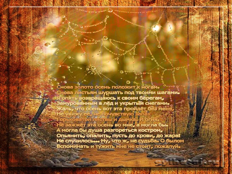 относится позам картинки и красивый стих про нашу осень может быть самостоятельным