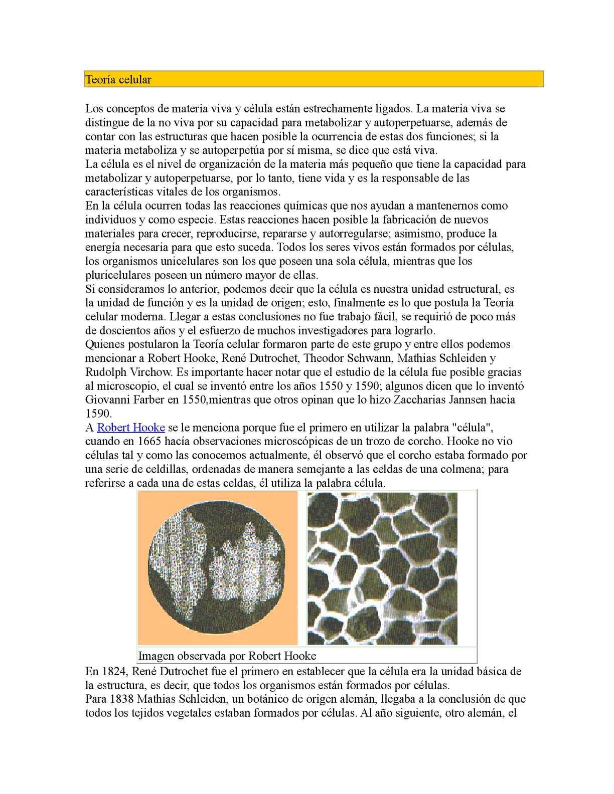 Calaméo Teoría Celular