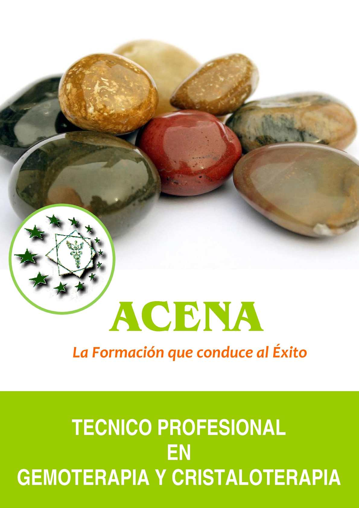 Manual De Gemoterapia Pdf