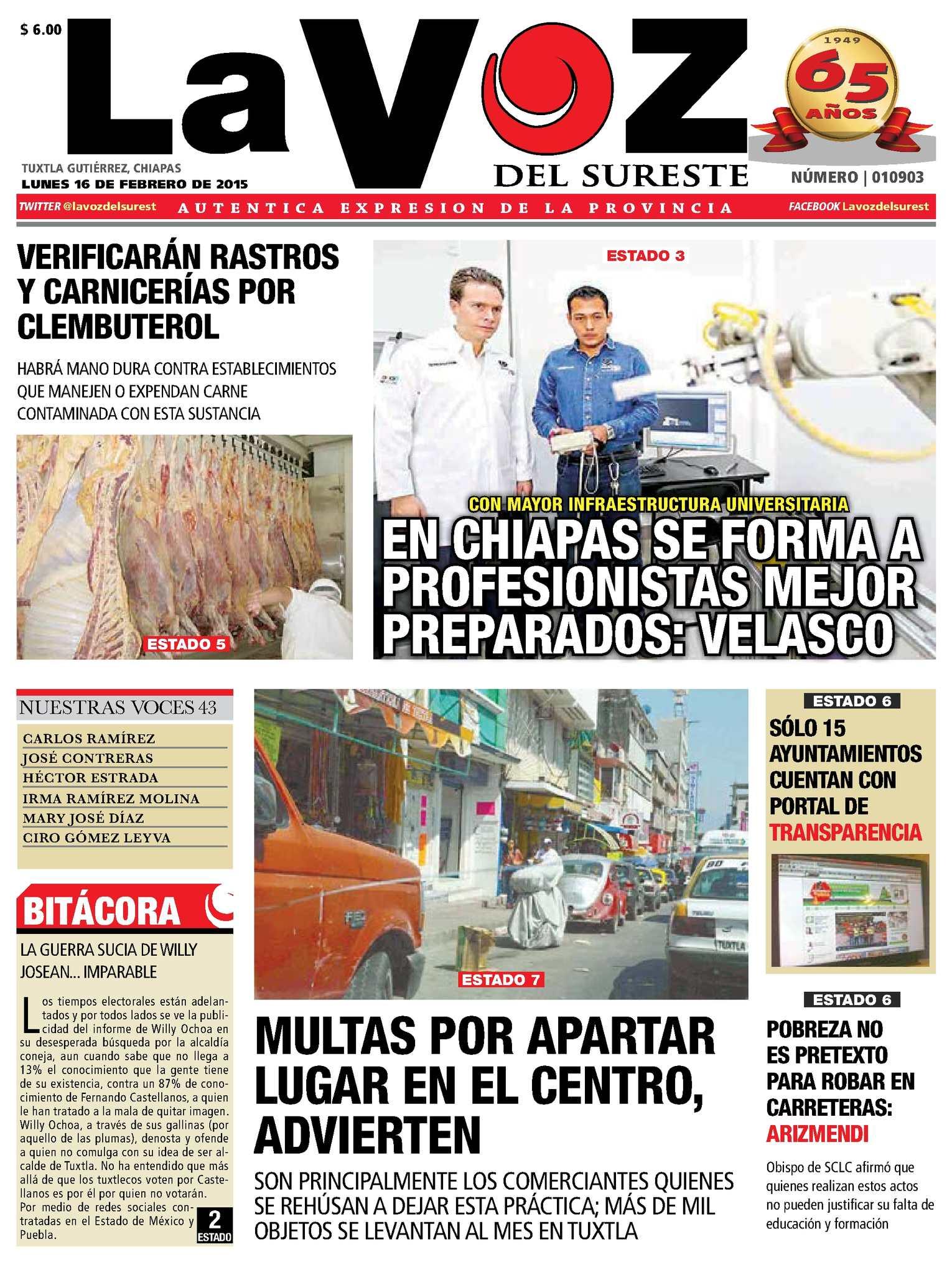 Calaméo - Diario La Voz del Sureste 64a39870015e