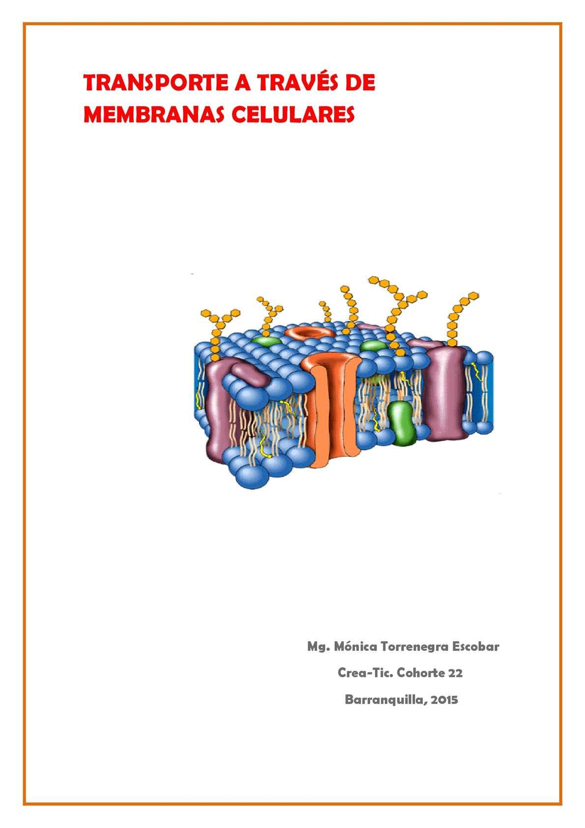 Calaméo Revista Transporte A Través De Membranas Celulares