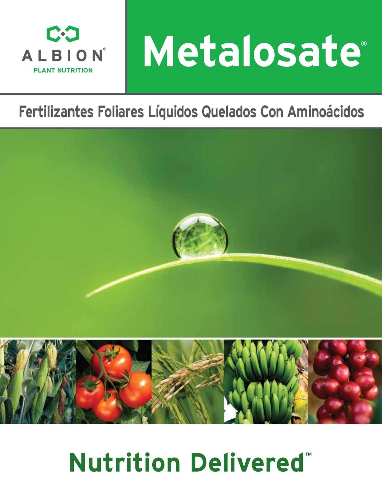 Brochure Metalosate Plant Nutrition 2015