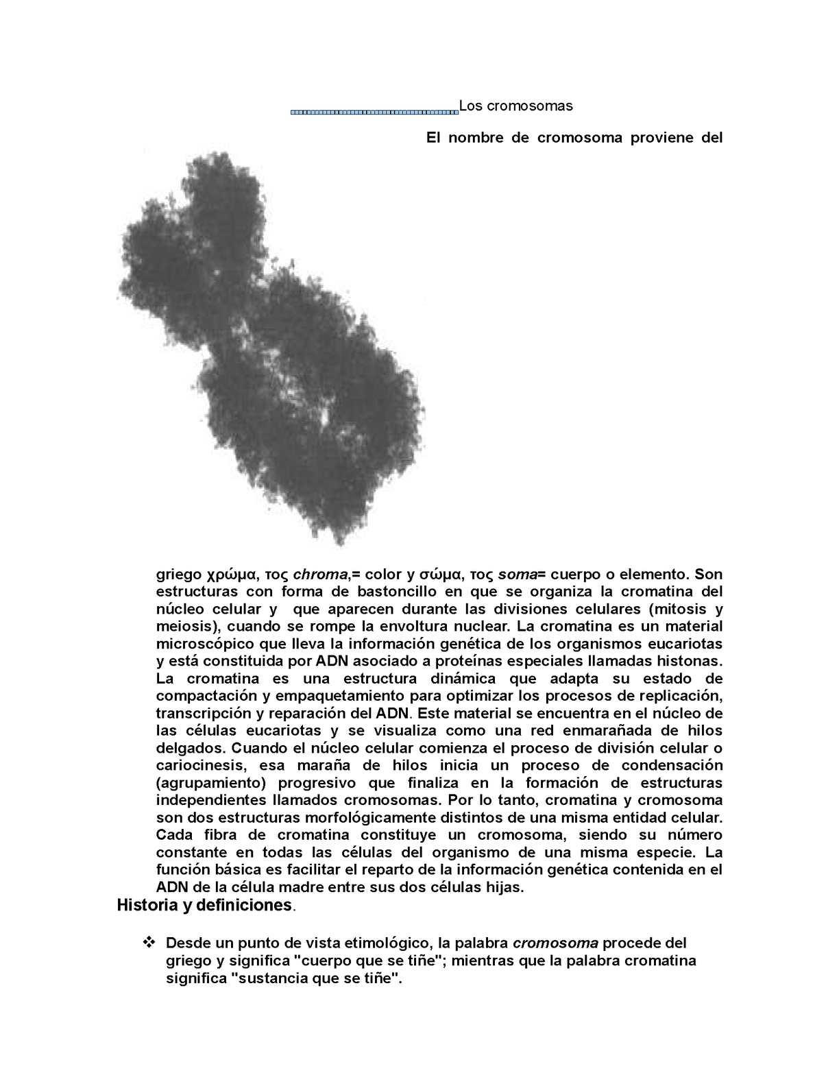 Calaméo Los Cromosomas Reparado