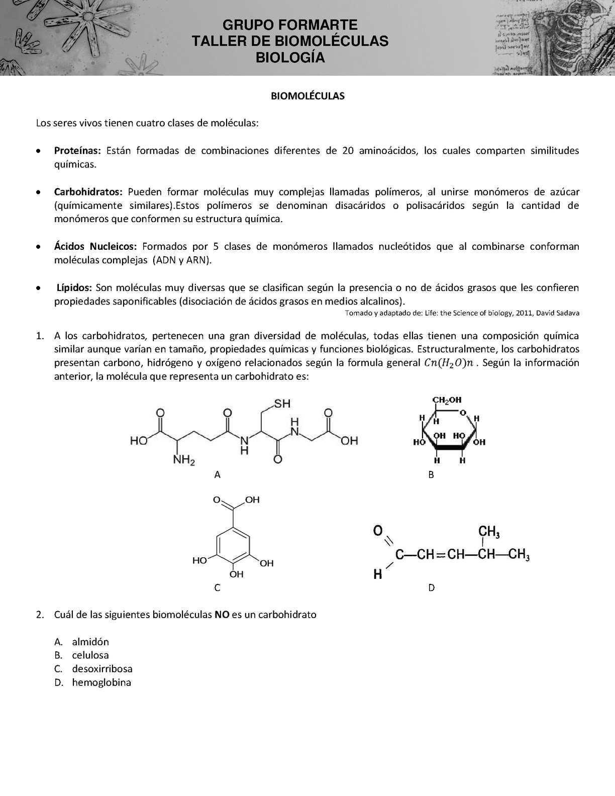 Calaméo Taller 1 Biologia