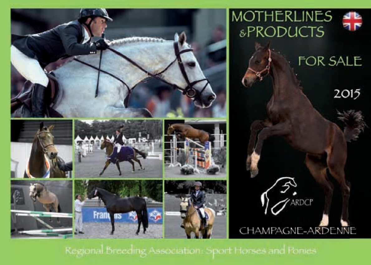 poneys a vendre de sport betting