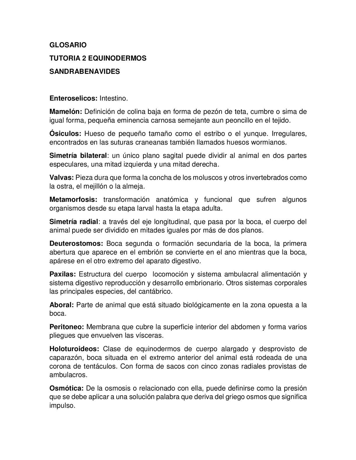 Calaméo Glosario Equinodermos