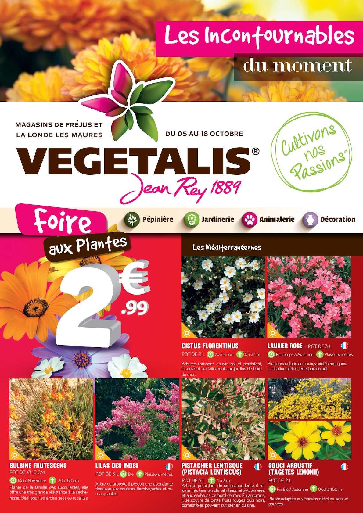 Arbuste Persistant Pour Pot calaméo - le mag' d'octobre - fréjus / la londe