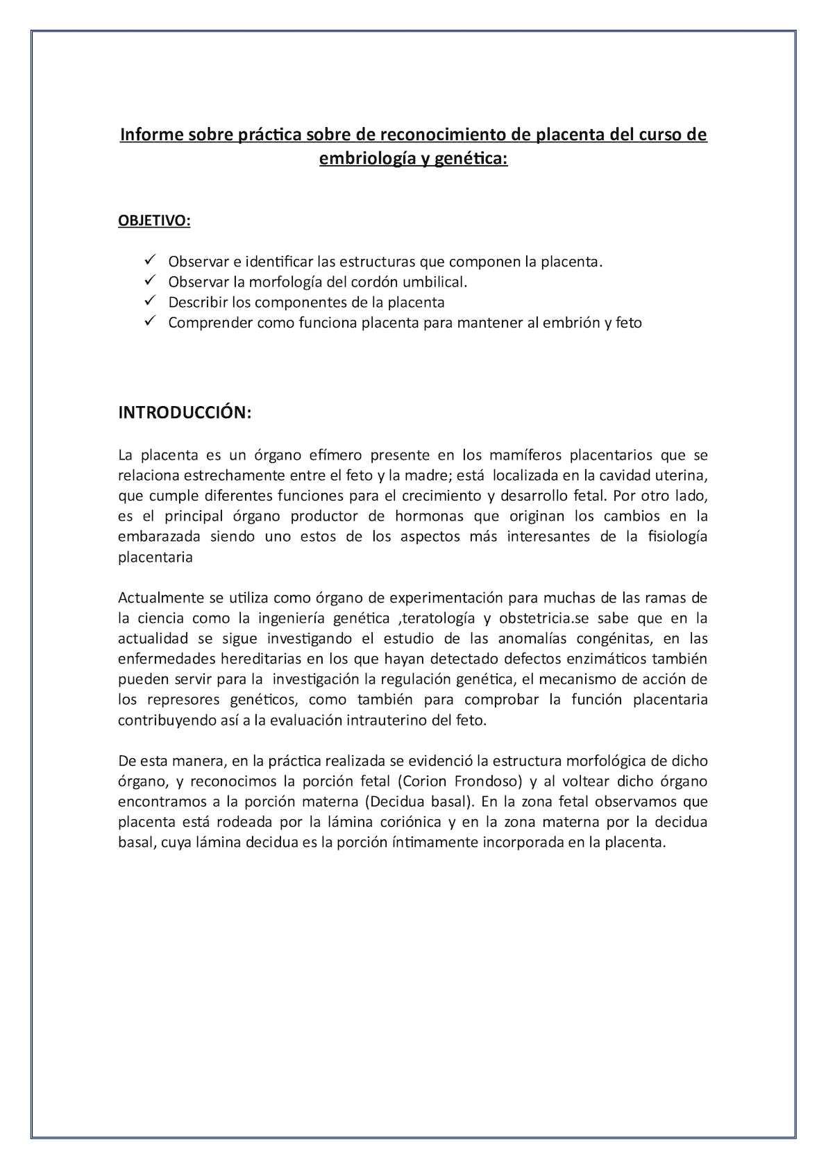 Informe Placenta 2015 Calameo Downloader
