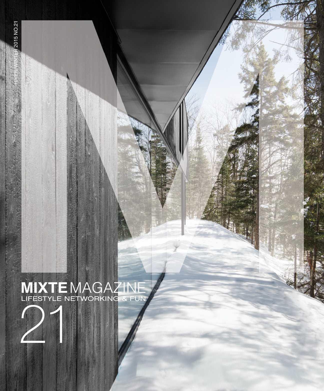 """32 /""""Noir Fibre optique multicouche arbre avec Silver Tips FO2"""