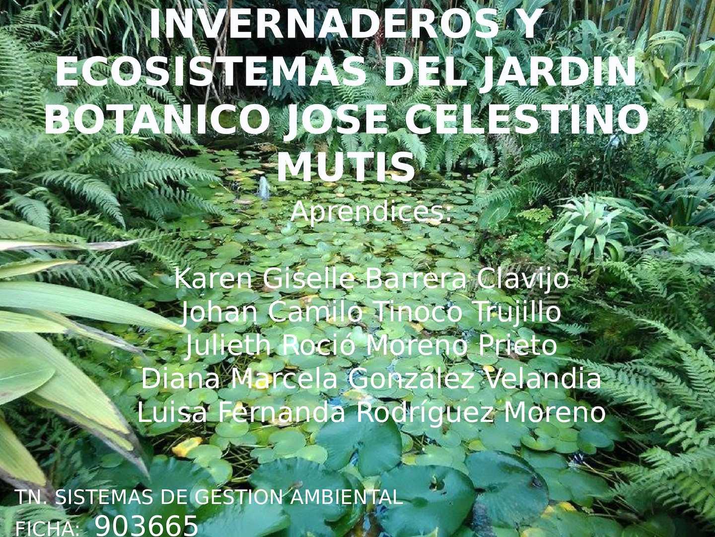 Calaméo - Cartilla Jardin Botanico Jose Celestino Mutis