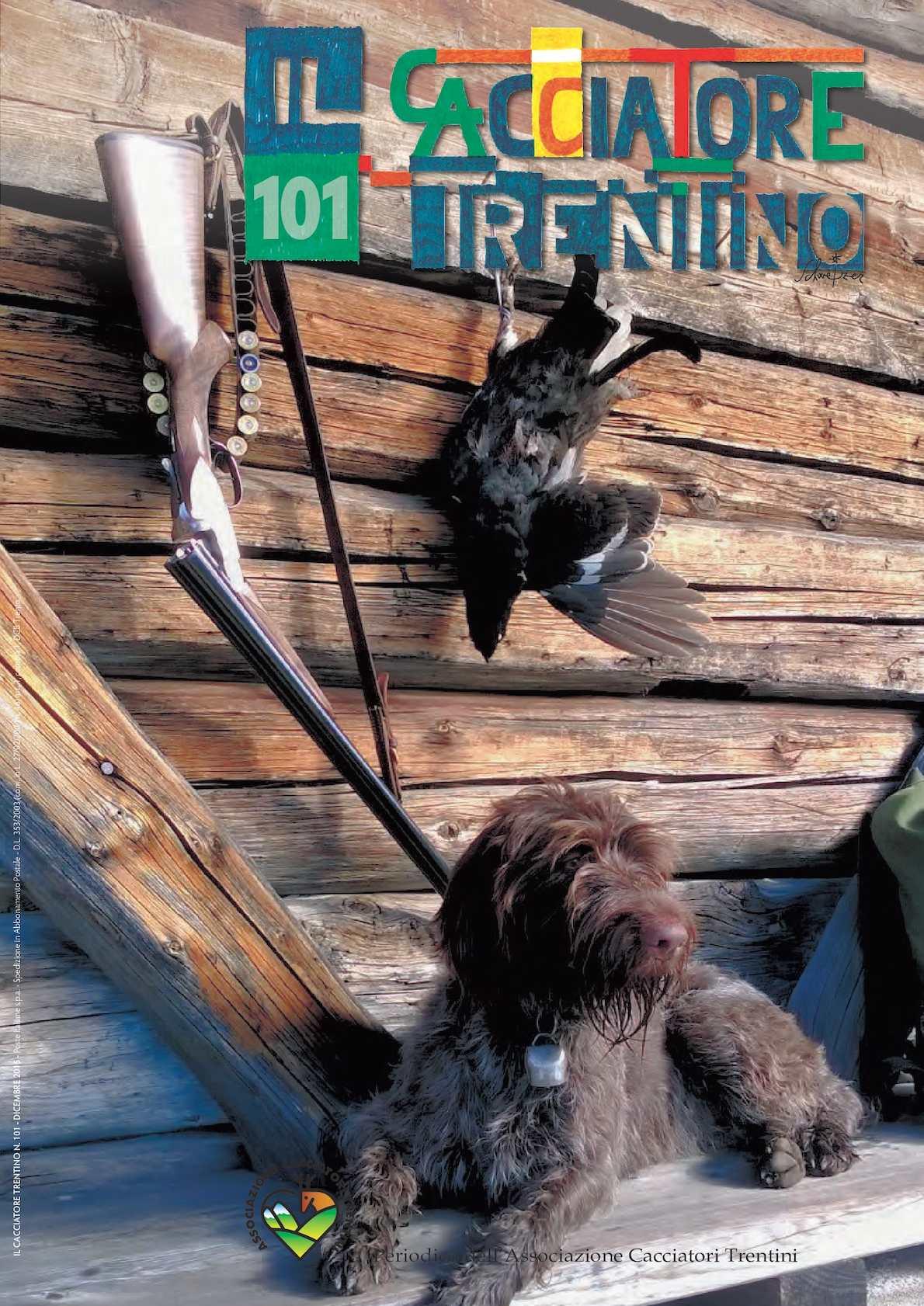 Non Casa senza Schnauzer Cane Dog Segno Metallo Insegna Stagno 20 x 30 CM