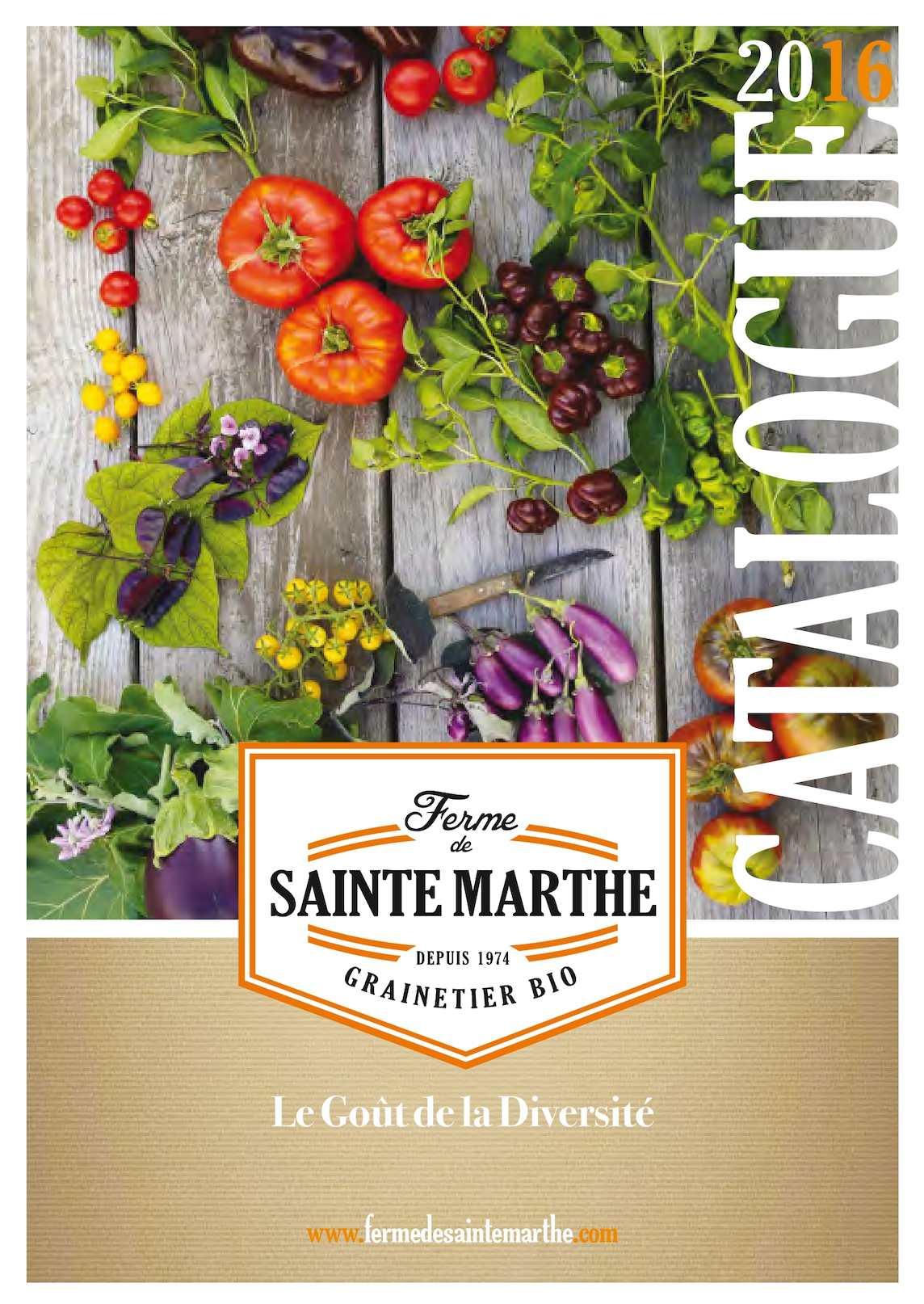 7 Variétés multicolores-Mélangé Tomates Graines vieux Variétés de semences Tomates 20 grain t2