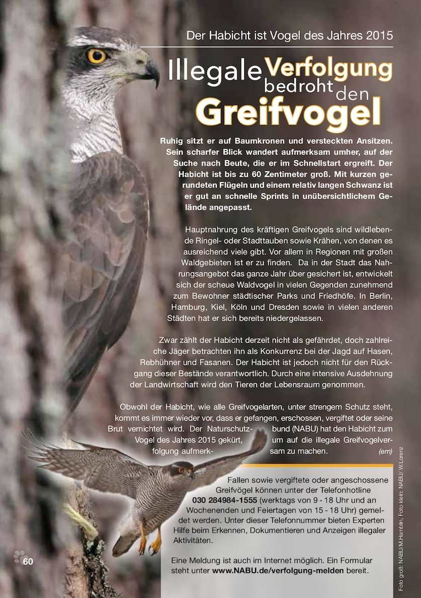 TIERISCH GUT   25/20255 Tiermagazin   Tiere   CALAMEO Downloader