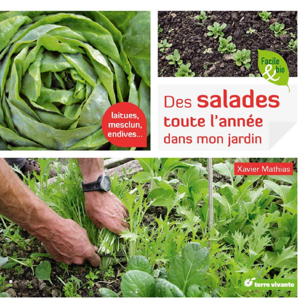 Quelle Salade Planter Maintenant calaméo - des salades toute l'année dans mon jardin