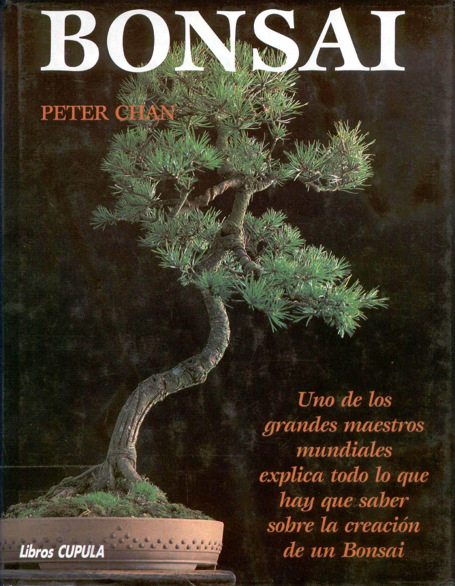 Bonsai Peter Chan Spanish Calameo Downloader