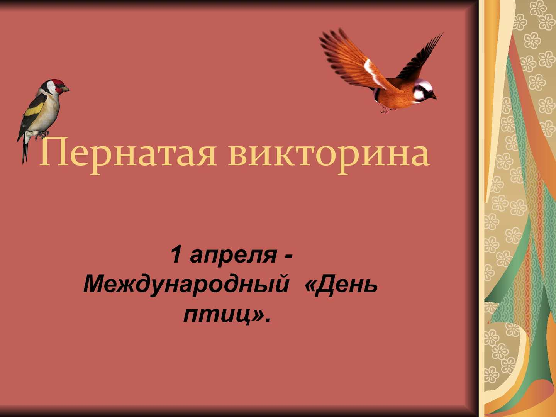 она викторина о птицах картинка рубежом принято