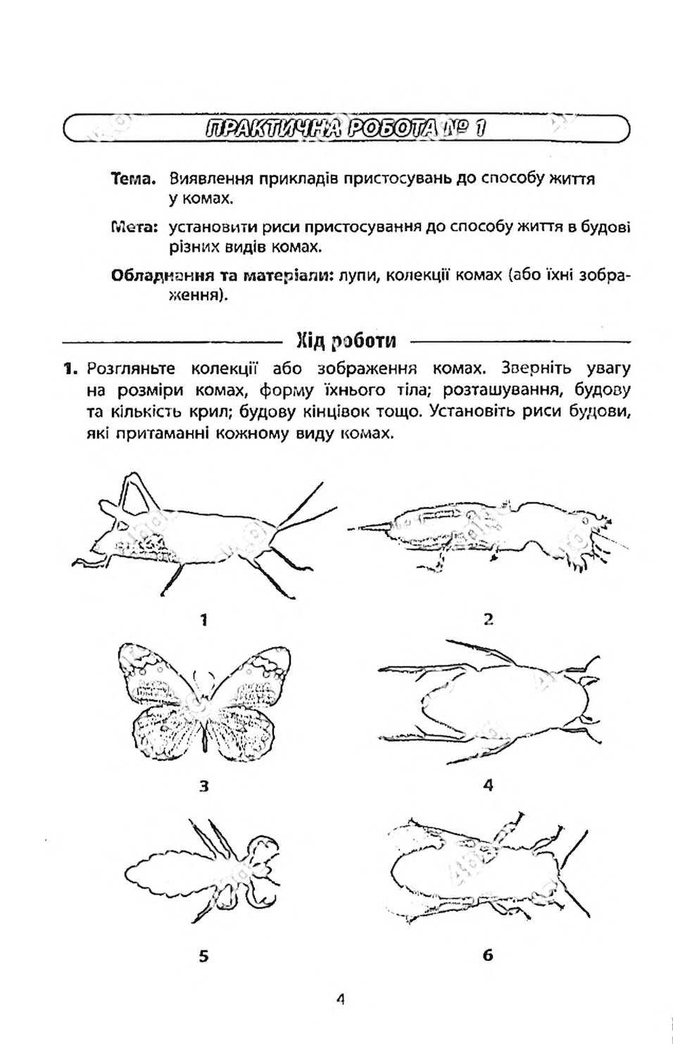 Робочий Зошит Біологія 7 клас Безручкова 2015
