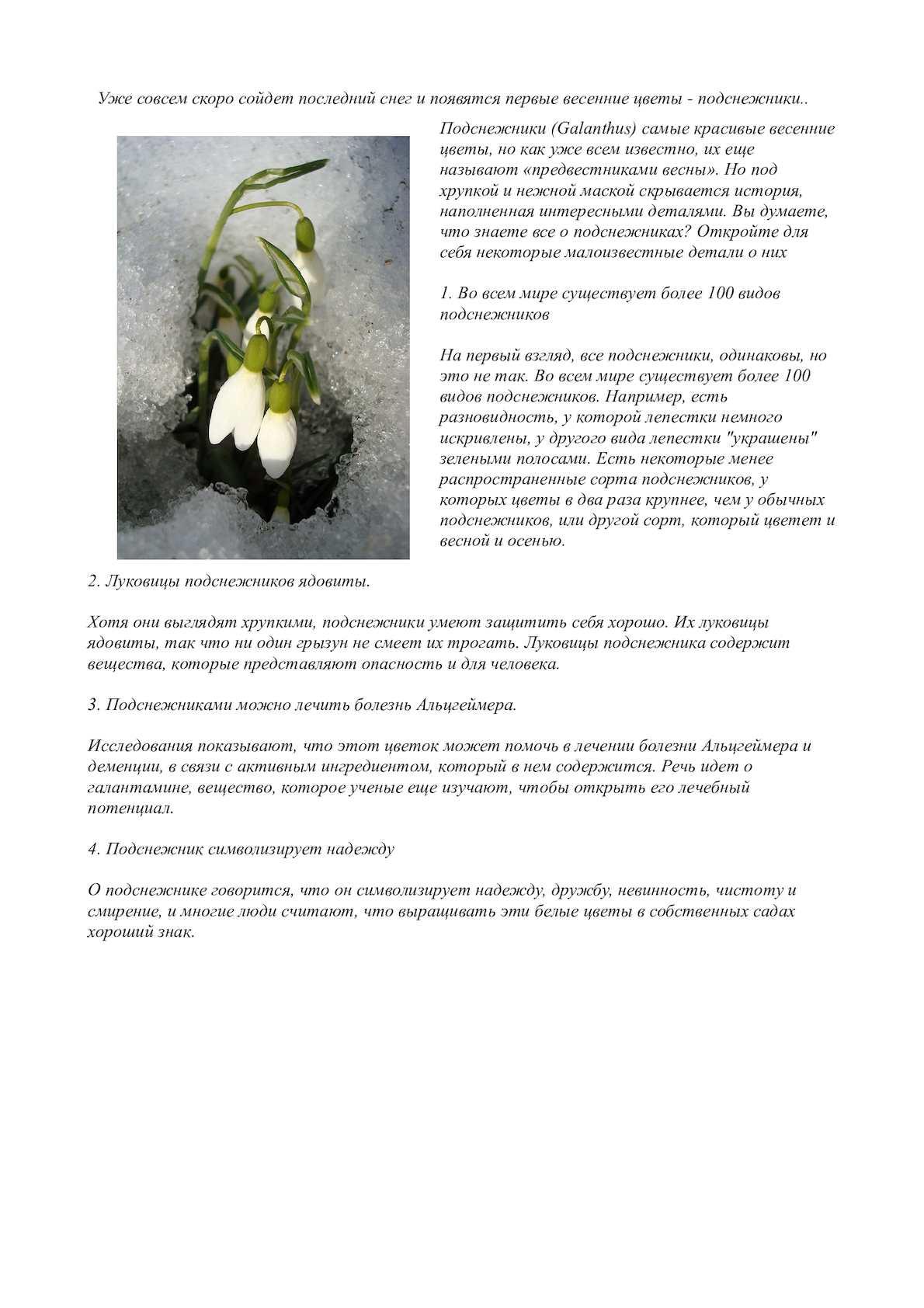 963f998bf5e4 Calaméo - Cообщение о подснежниках