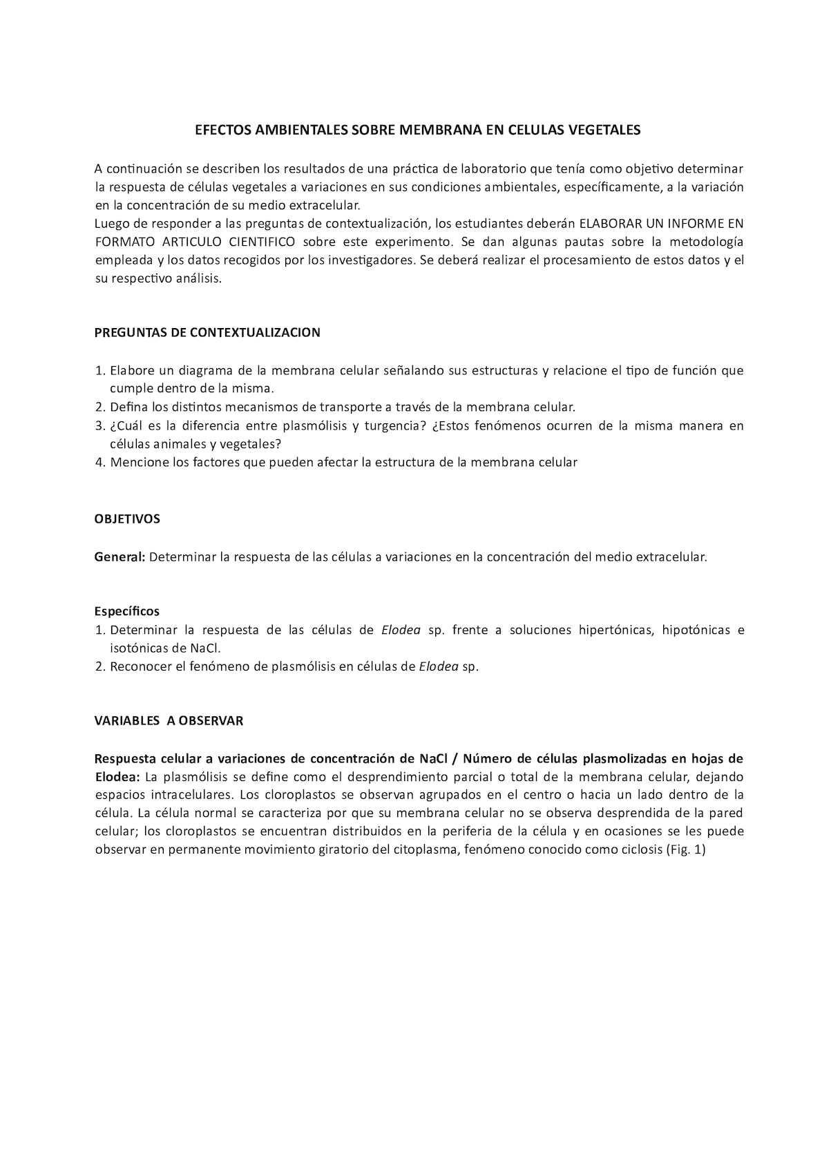 Calaméo Biologia 2