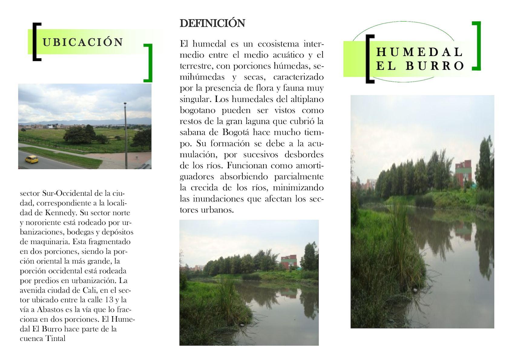 Calameo Humedal El Burro
