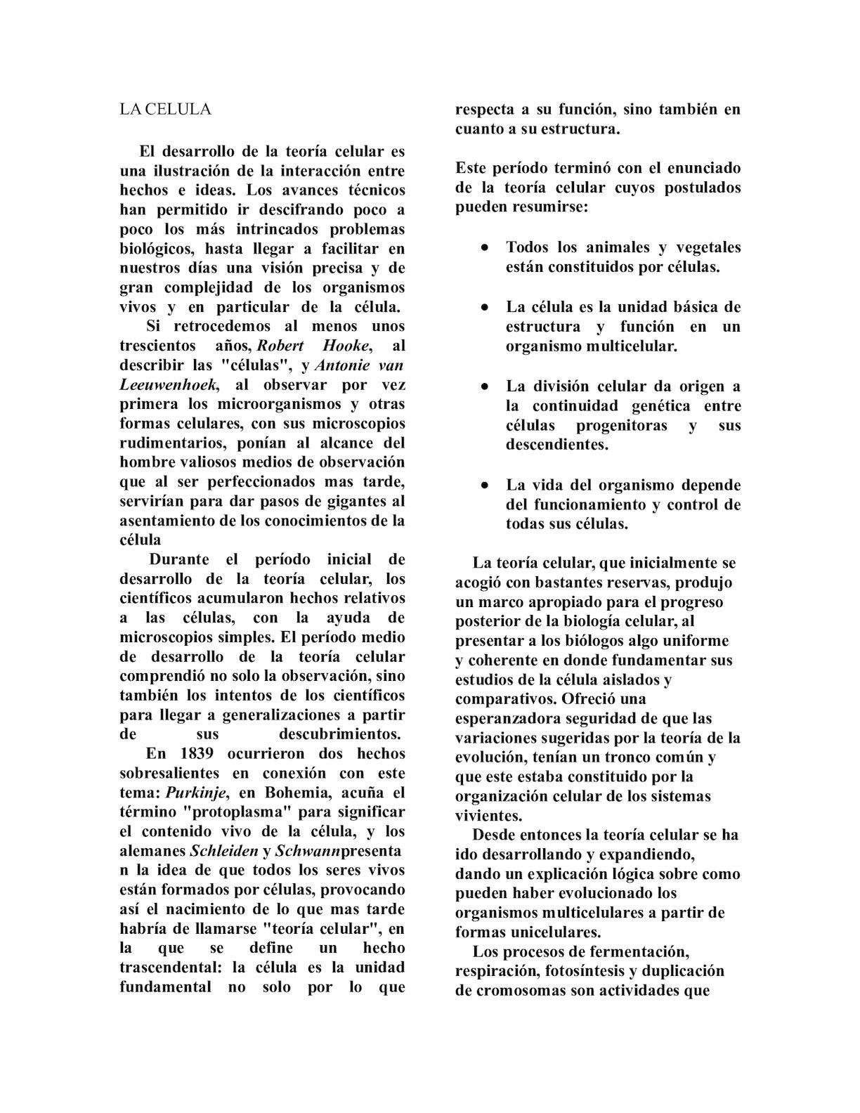 Calaméo La Celula Diego Vargas