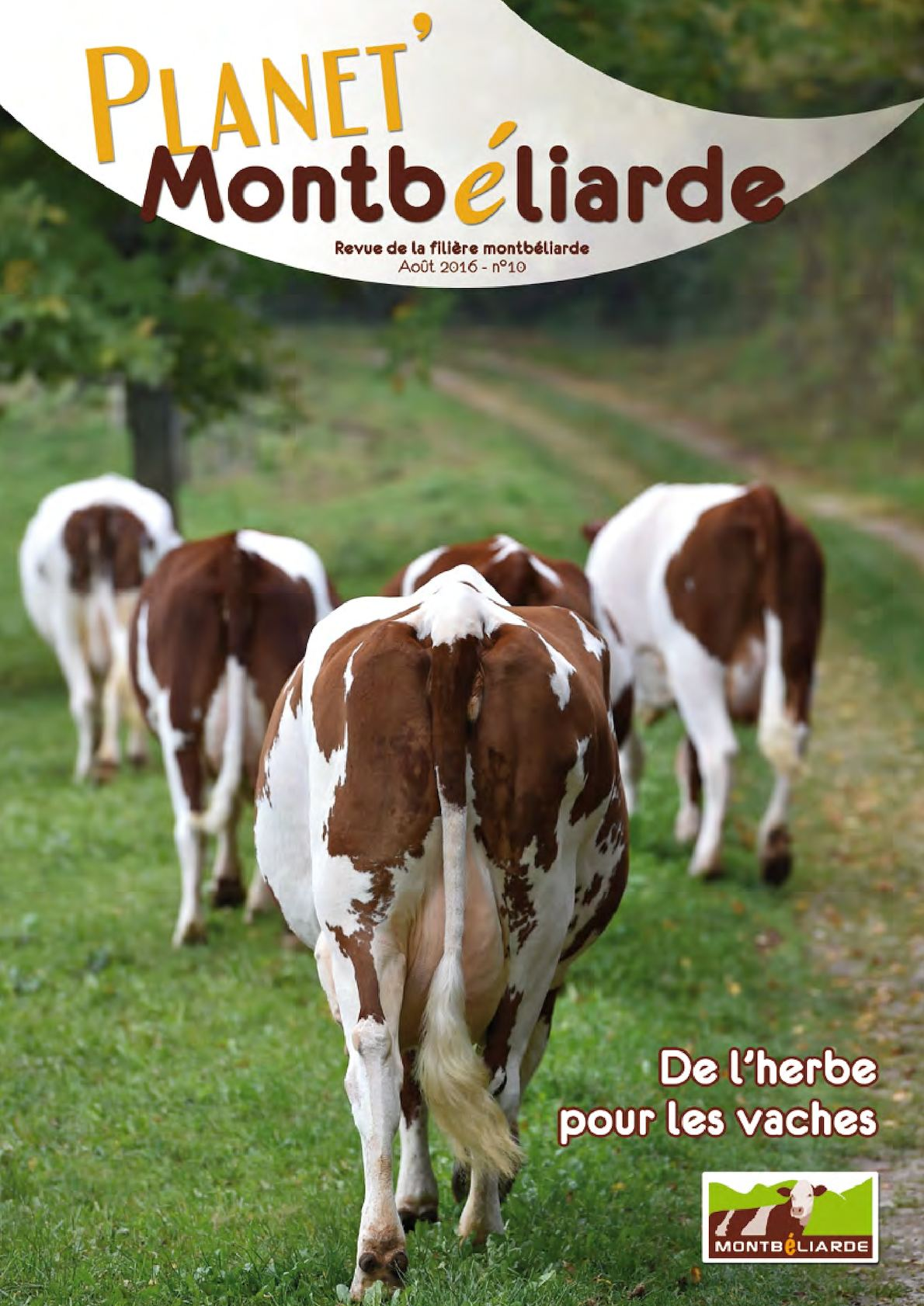 Calaméo - Planet  Montbéliarde n°10 - Août 2016 d0e3e983d8d