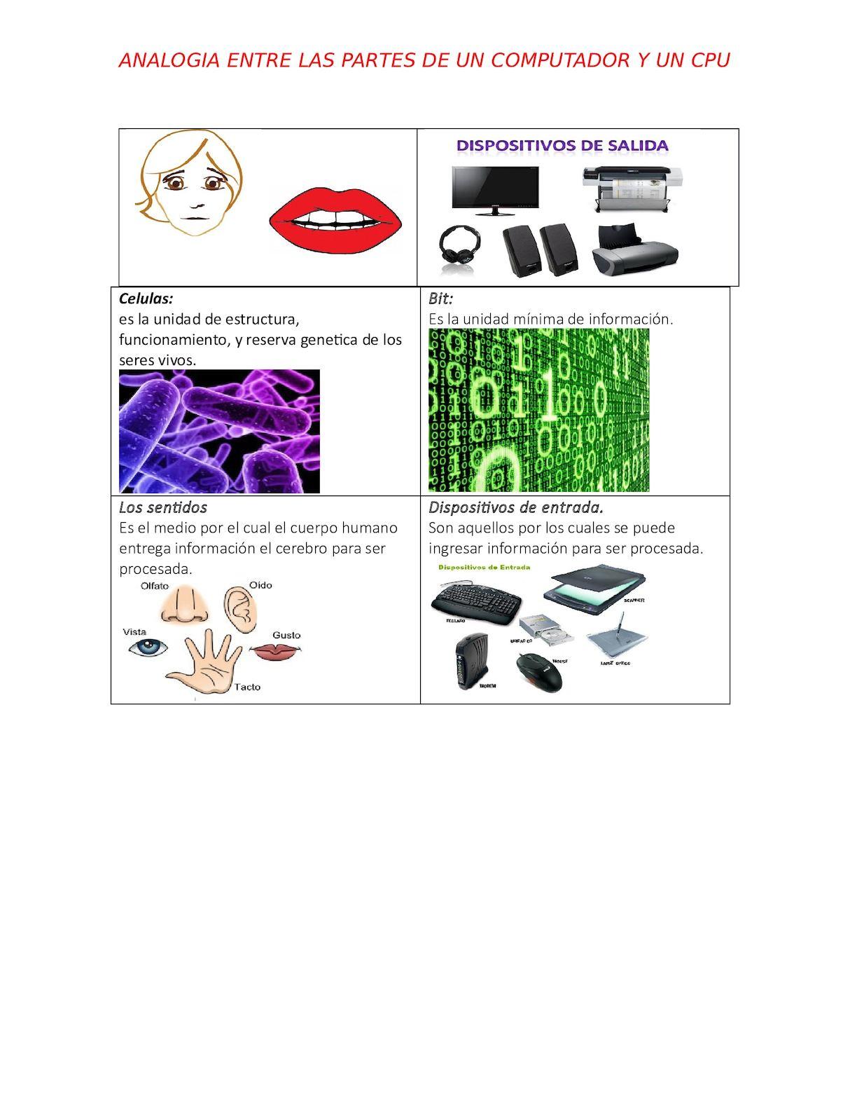 Analogia Calameo Downloader