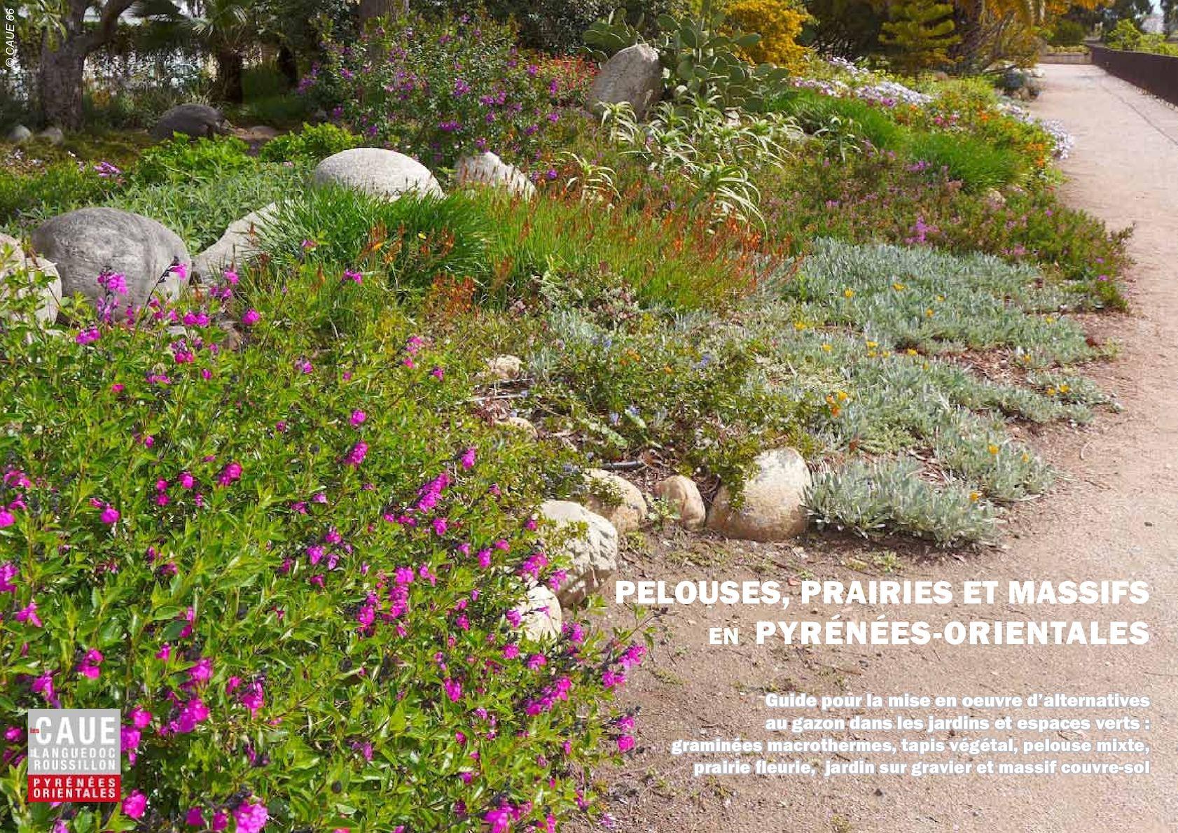 Plantes Pour Talus Sec calaméo - guide pour la mise en oeuvre d'alternatives au