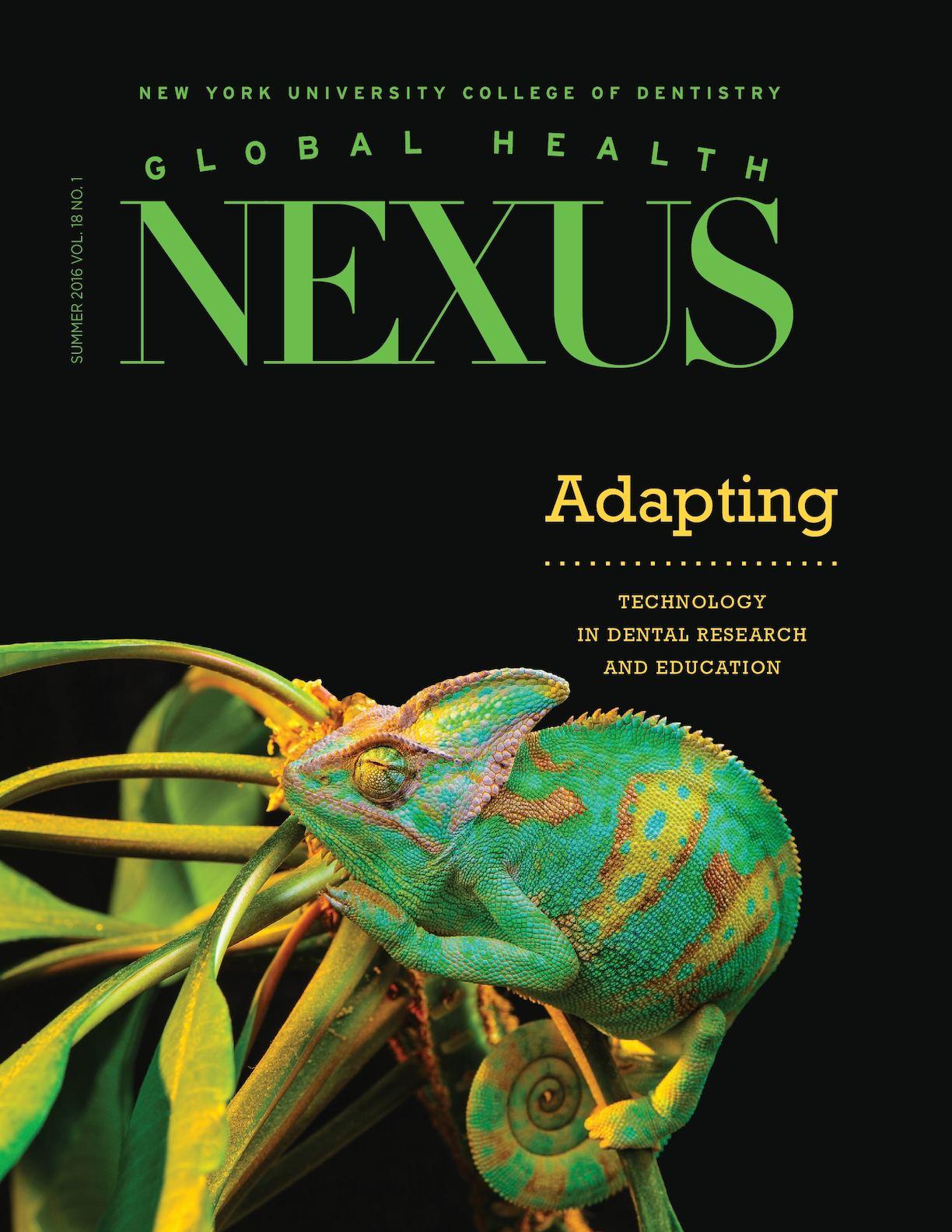 Calaméo - Global Health Nexus, Summer 2016: Adapting