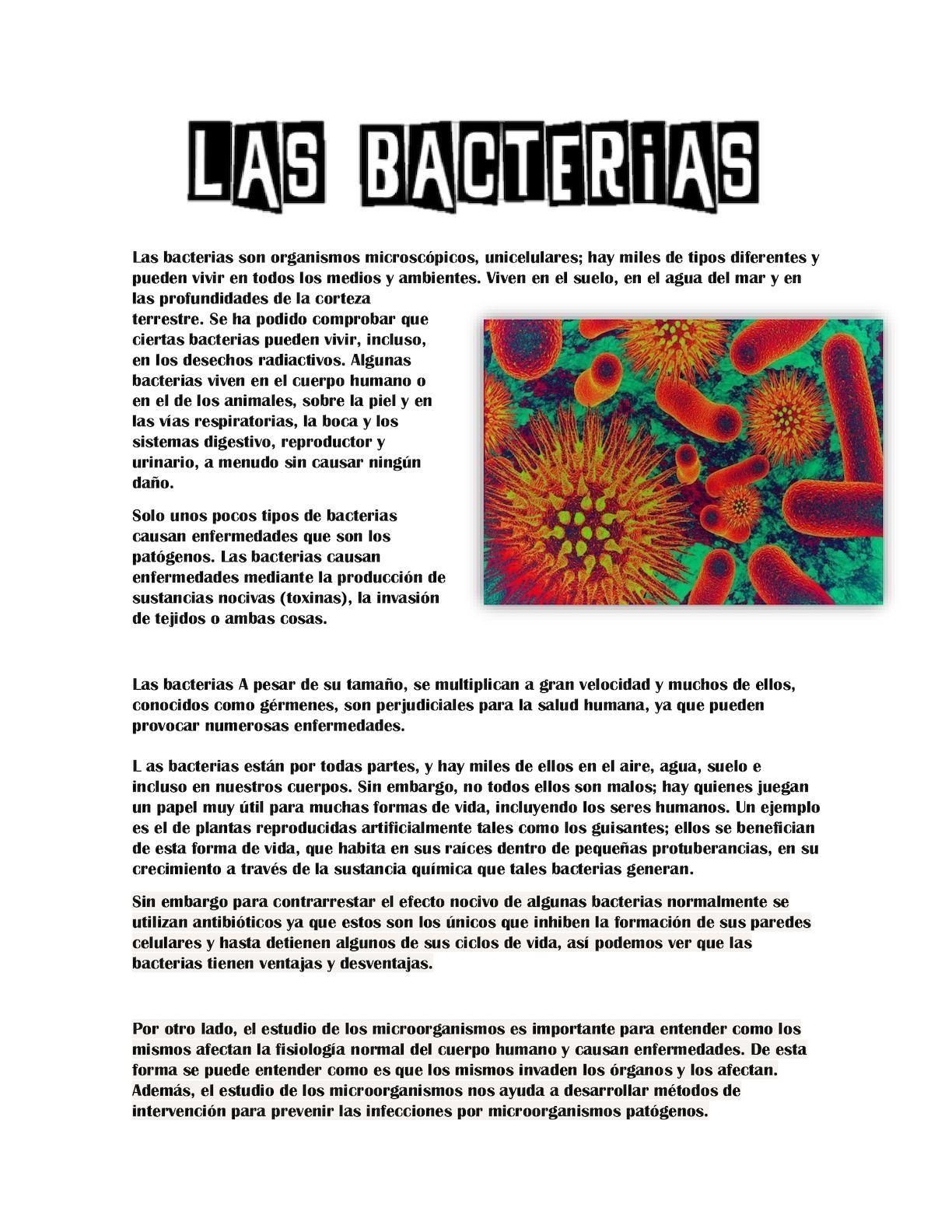 bacterias que causan enfermedad al ser humano