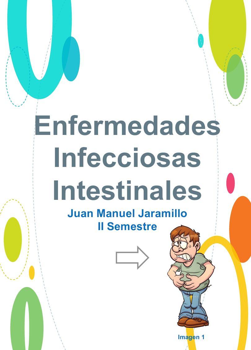 infecciones gastrointestinales definicion