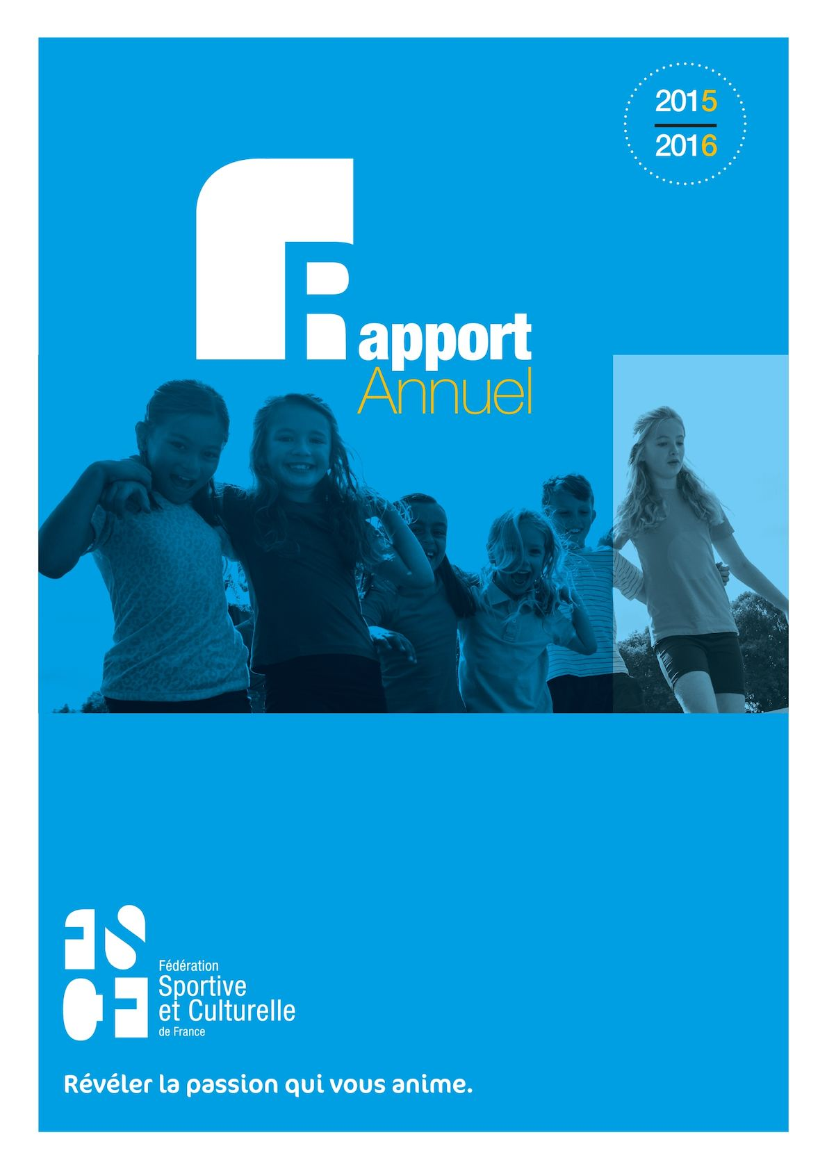 Calaméo - Fscf Rapport Activité 2016 03cff7cab29