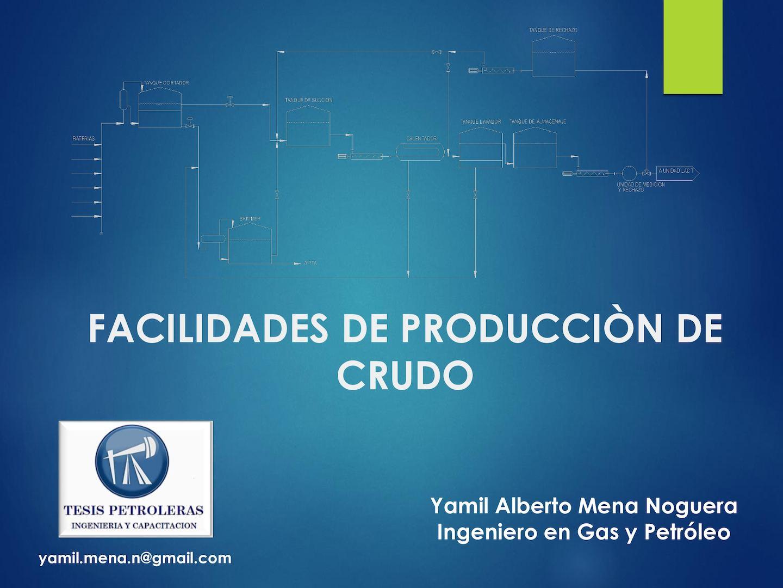 FACILIDADES DE PRODUCCION EBOOK