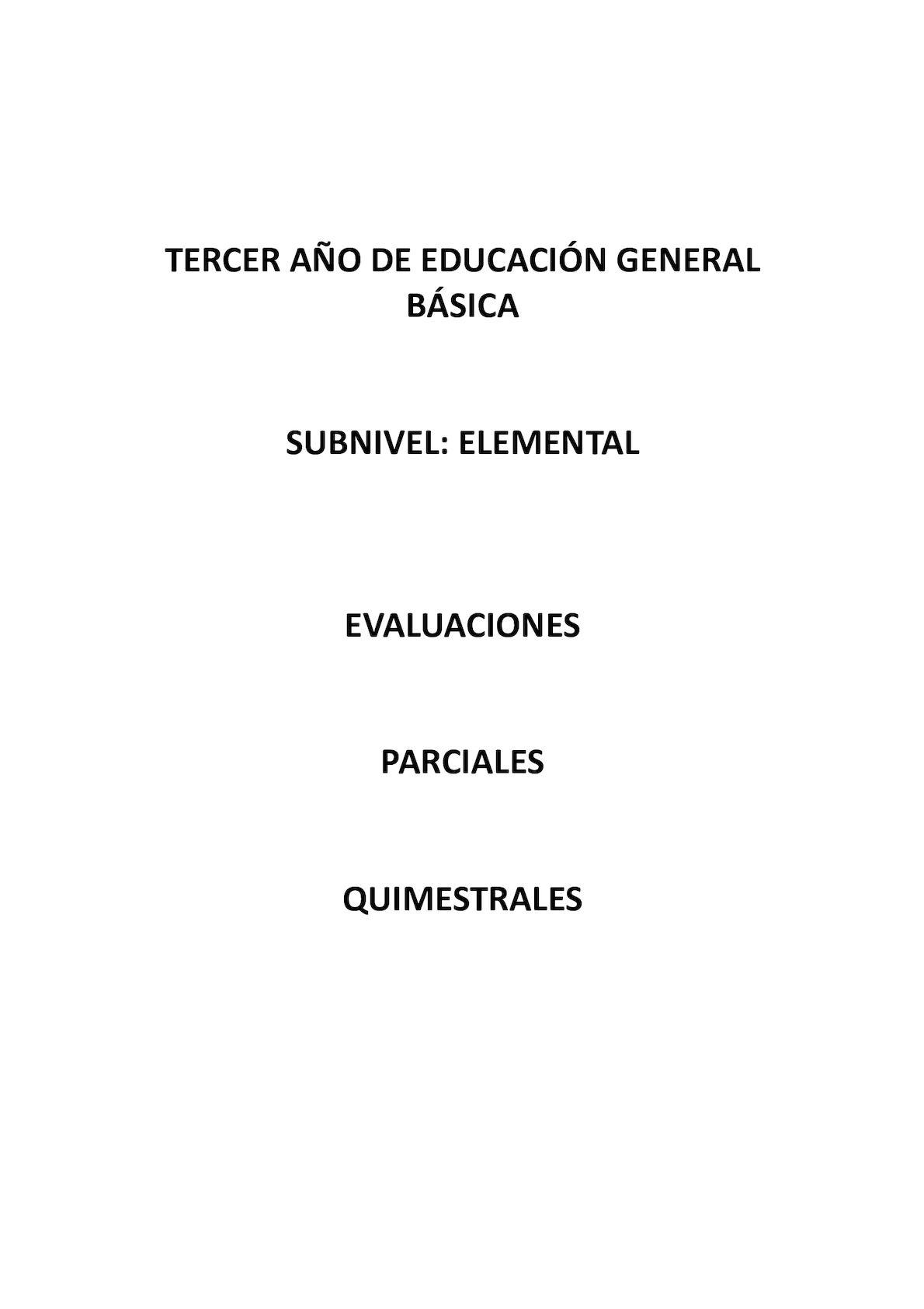 Calaméo Evaluaciones Lengua 3er Año Completo 2