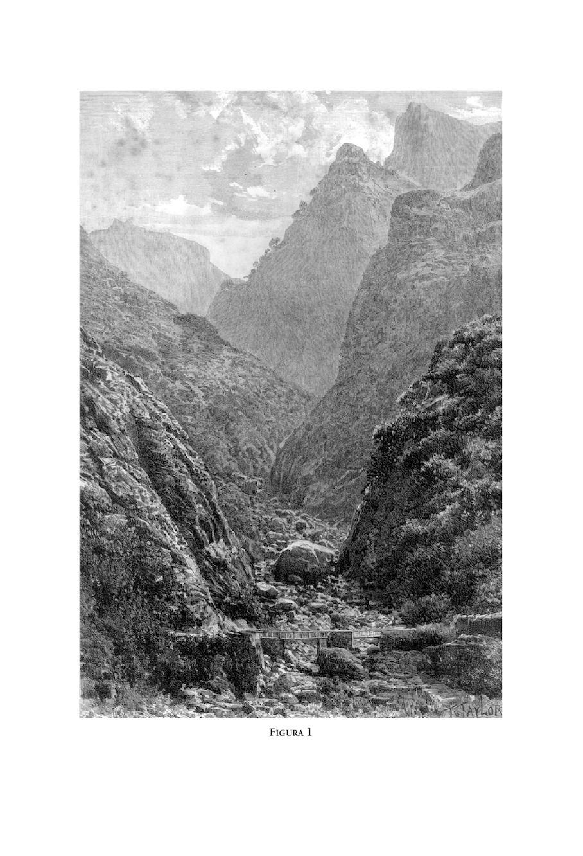 f559b69a3f0 Calaméo - Livro Estudos Insulares 2 Hist Econ Madeira Af
