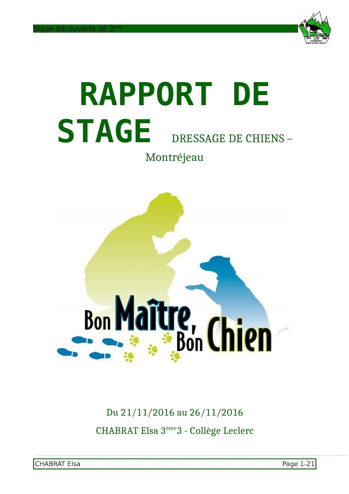 Calaméo Rapport De Stage Chabrat Elsa 3e3