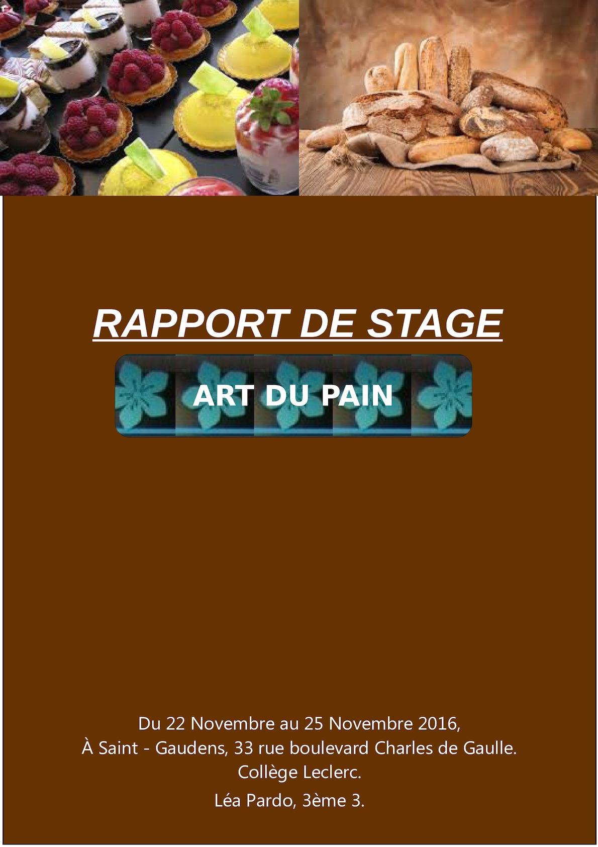 Calaméo Léa Pardo Rapport De Stage