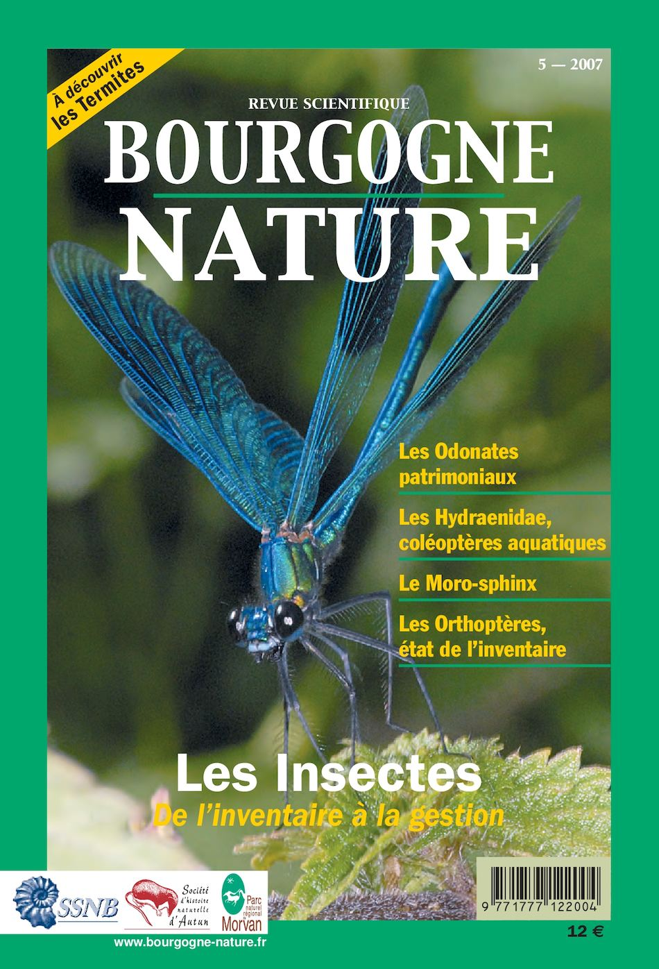 10x défenseurs Serre Insect Catcher tue Greenfly Insect Pest jaune pièges