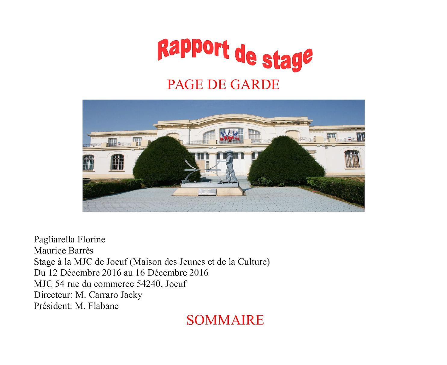Calaméo Florine Pagliarella Rapport De Stage