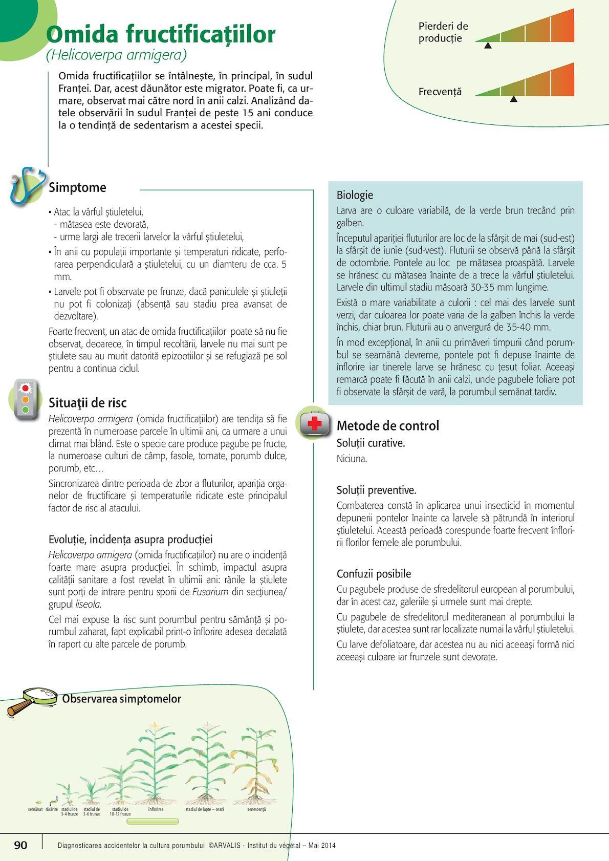 la stadiul inițial al varicozei mocrica proprietăți utile în varicoză