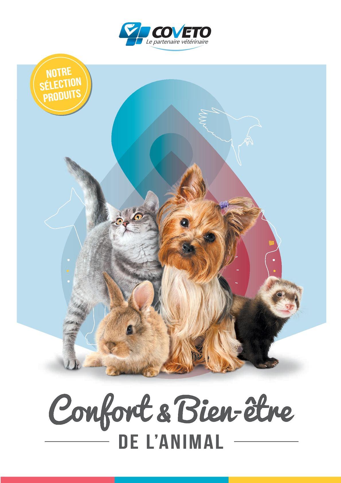 Protection pour chienne en chaleur Coussinet lavable en machine en option Toutes tailles Noir /à pois roses