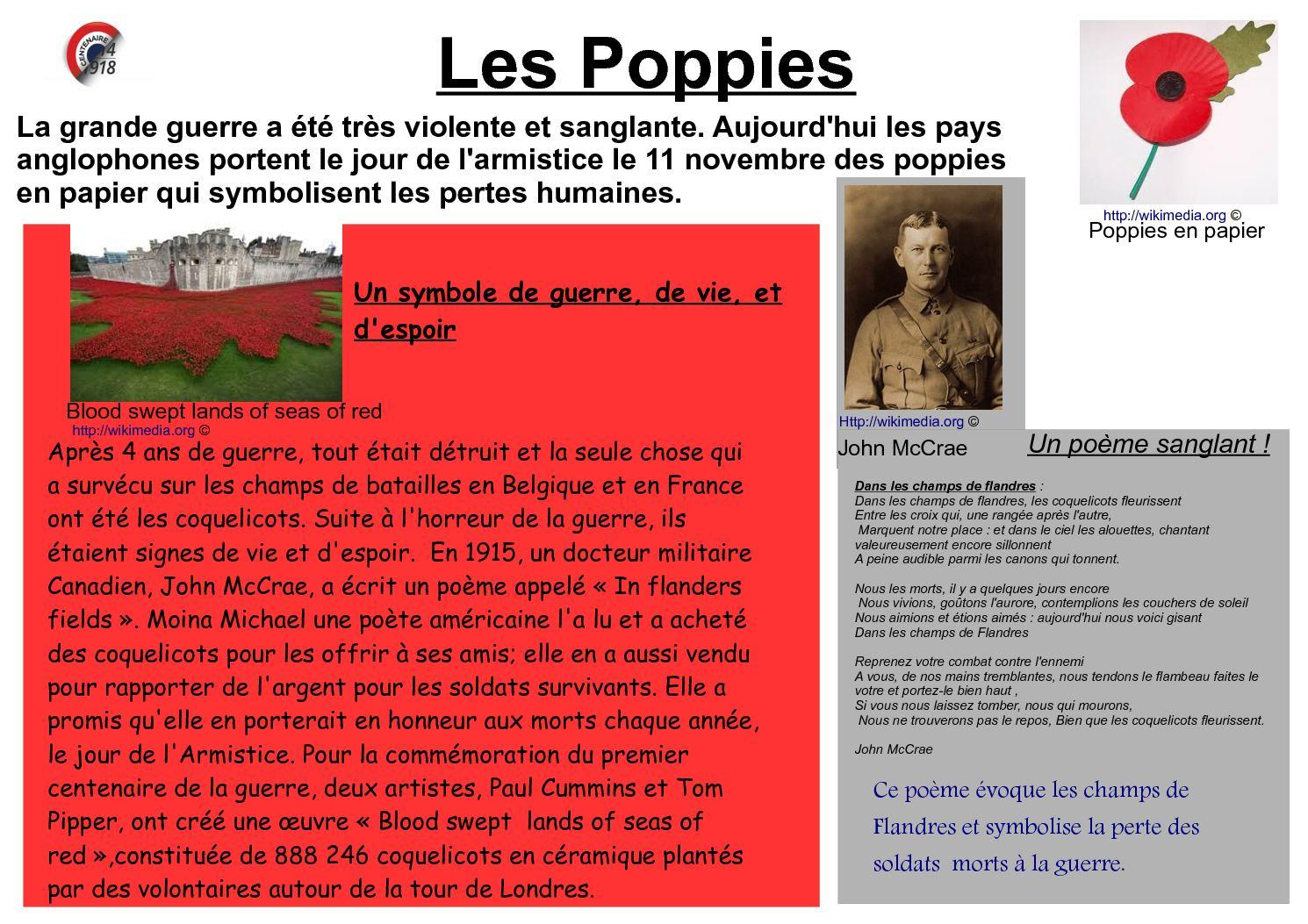 Calaméo Les Poppies