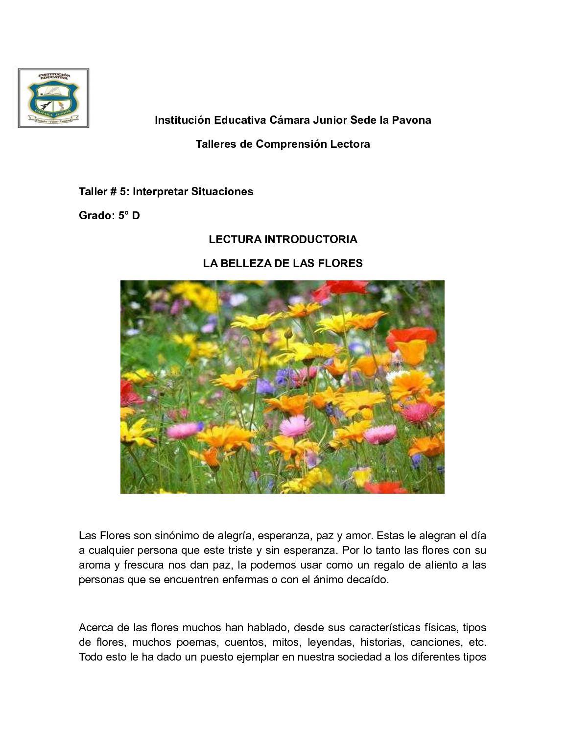 Calameo Institucion Educativa Camara Junior Sede La Pavona 5
