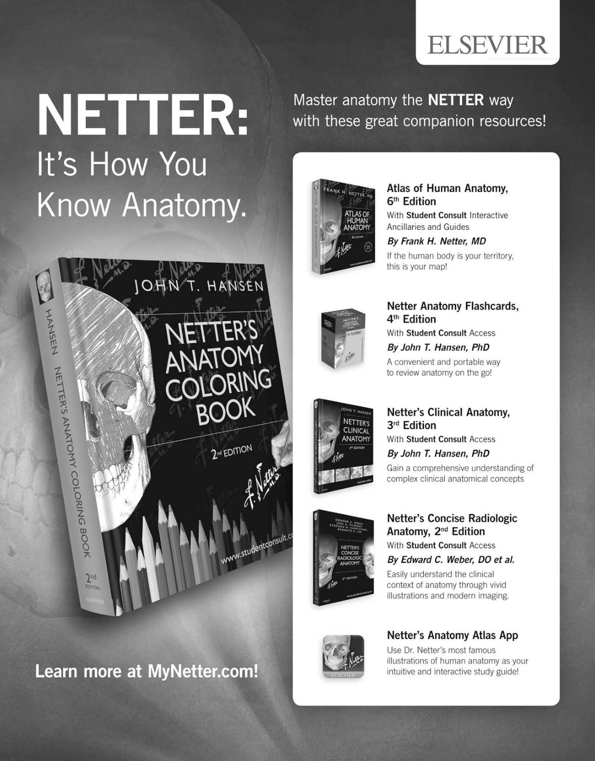 Netter\'s Anatomy Coloring Book - CALAMEO Downloader
